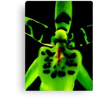 Storm Trooper - Orchid Alien Discovery Canvas Print