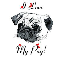 I Love My Pug!  Photographic Print