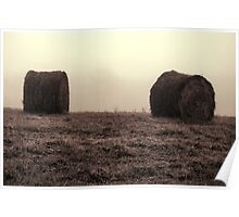Country Landscape I Poster