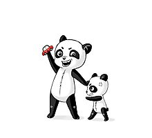Panda Brothers Photographic Print