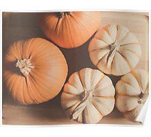Pumpkins 4 Poster