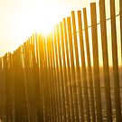 Blinding Sunrise Over A Sand Fence - Jones Beach State Park | Wantagh, New York by © Sophie W. Smith