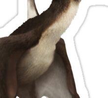 Dsungaripterus, the ugliest pterosaur Sticker