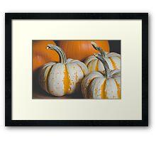 Pumpkins 8 Framed Print