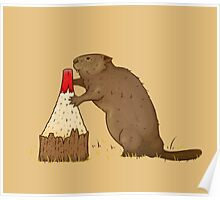 The Beaver And The Color Poster