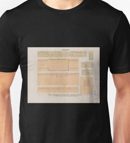 0005 Aethiopen Barkal Jebel Barkal a f Säulen Deckplatten aus Tempel L Raum M g Thürleibung nach Raum B h k Altar aus Raum E l Altar aus dem Dorfe Méraueh Unisex T-Shirt