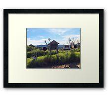 NSW Framed Print
