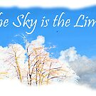 The Sky is the Limit, Trees and Blue Sky by naturematters