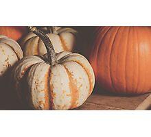 Pumpkins 11 Photographic Print