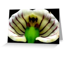 Dungeon Dragon - Orchid Alien DIscovery Greeting Card