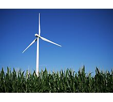 Fields of Green Energy Photographic Print
