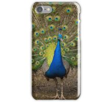 Stunning Male Peacock iPhone Case/Skin