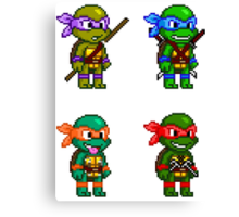 Teenage Mutant Ninja Turtles Pixels Canvas Print