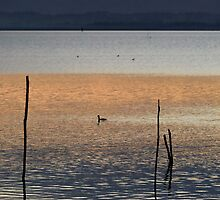 Layers of dusk, Lago Trasimeno, Umbria, Italy by Andrew Jones