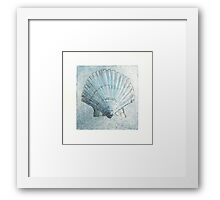 Scallop shell study Framed Print