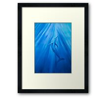 Dolphin in blue Framed Print