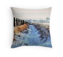 Snow Path Throw Pillow