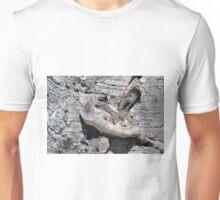 Wood texture on gray stone background Unisex T-Shirt