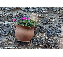 Pot of flowers on a stone wall Photographic Print