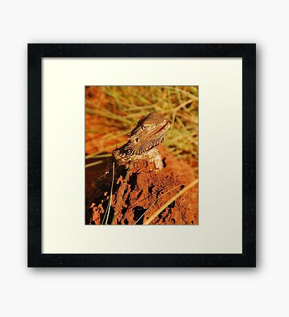 Warming Up The Bones :) Framed Print