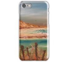Life of a fence iPhone Case/Skin