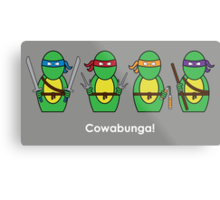 Teenage Mutant Ninja Turtles Metal Print