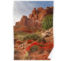Paintbrush in Arches Poster