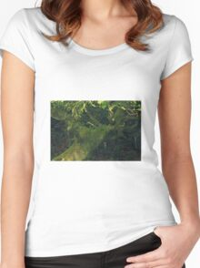 Old bent tree Women's Fitted Scoop T-Shirt