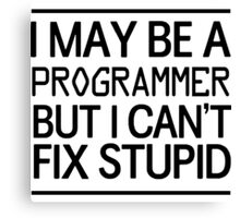 I may be a programmer but I can't fix stupid Canvas Print
