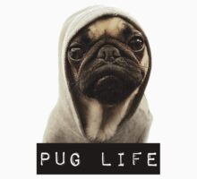PUG LIFE by DCPRODUCTION