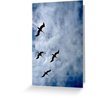 Seabirds Over Pacifica, California Greeting Card