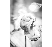 Rosen Zimmer Photographic Print