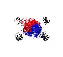 korean flag brush Photographic Print