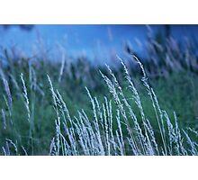 Fluss Geschichten Photographic Print
