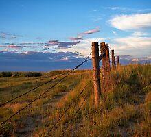 Prairie Fence Briggsdale Colorado by johnny gomez