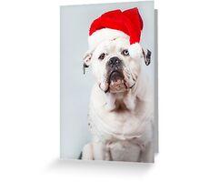 Bentley Christmas Greeting Card