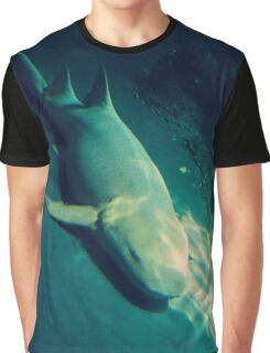 Resting Shark Graphic T-Shirt