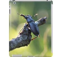 Kite adventure iPad Case/Skin