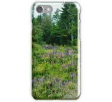 Northcountry Nod to Monet iPhone Case/Skin