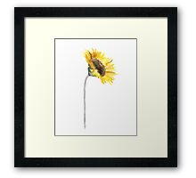 Sunflower Flower Stem Minimalist Art Print Abstract Floral  Framed Print