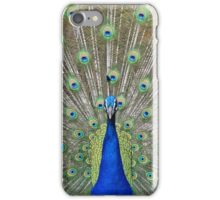 Peacock Bird Feathers iPhone Case/Skin
