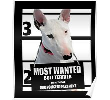 Most Wanted Bull Terrier T-shirt - Dog Tee Shirts - 39 Poster