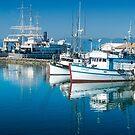 Hyde St Pier - Fisherman's Wharf San Francisco by Yukondick