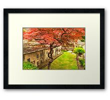 Red Tree In The Village Framed Print
