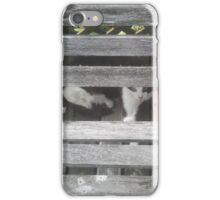 Lilly peeking. iPhone Case/Skin