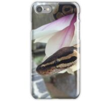 Tigerlily the ball python iPhone Case/Skin