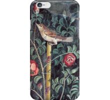 Pompeii wall fresco iPhone Case/Skin