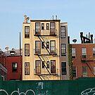 Brooklyn Neighborhood by henuly1