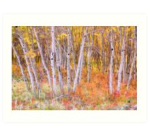 Psychedelic Forest Art Print