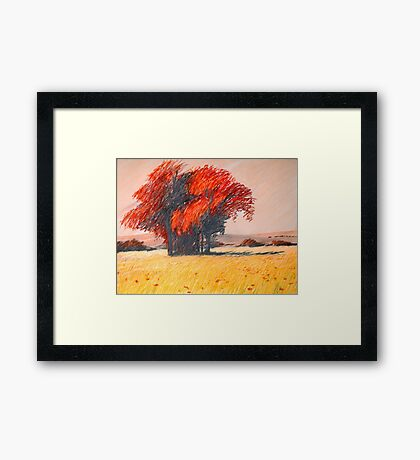 rote Insel Framed Print